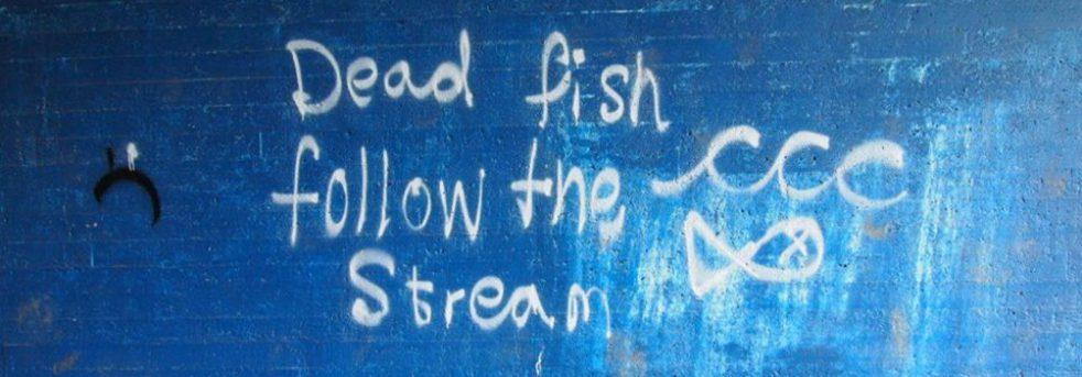cropped-dead-fish.jpg
